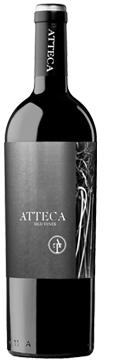 Atteca
